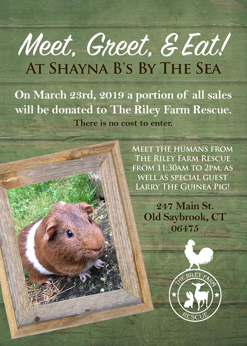 ShaynaBs The Riley Farm Rescue event flyer.jpg