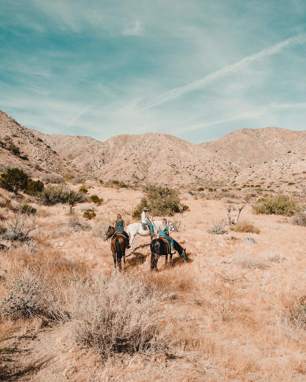 janni-deler-horseback-riding-8.jpg