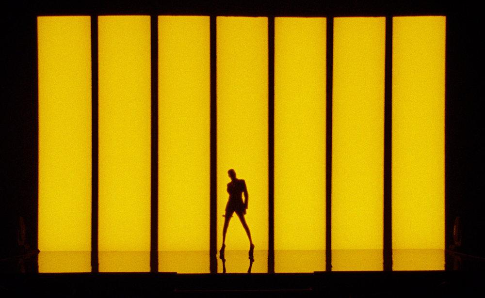 Yellow Silhouette.jpg