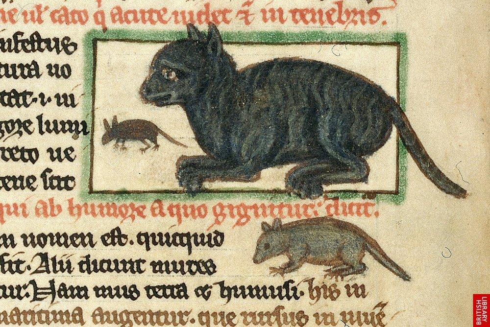 """Ett pergament upphittat i ett kloster i Syldavien från 1329 som omnämner """"Katten"""""""