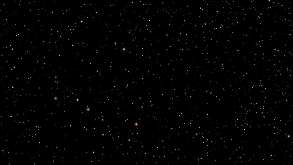 night-sky-005-a-star-field-twinkles-in-a-night-sky-loop_hf3owvebl_thumbnail-full01.png