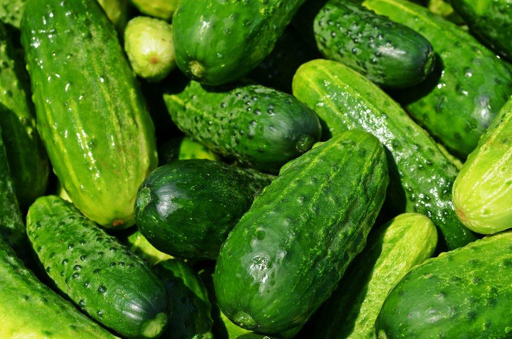 cucumbers-849269.jpg