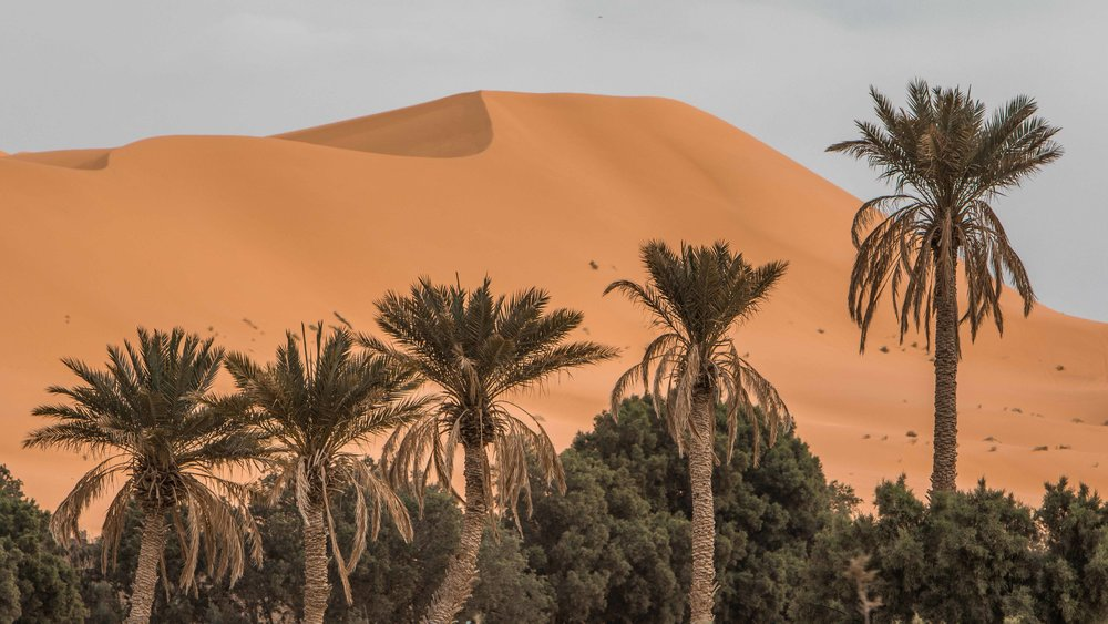 pol_tarres_projects_morocco_2019-35.jpg