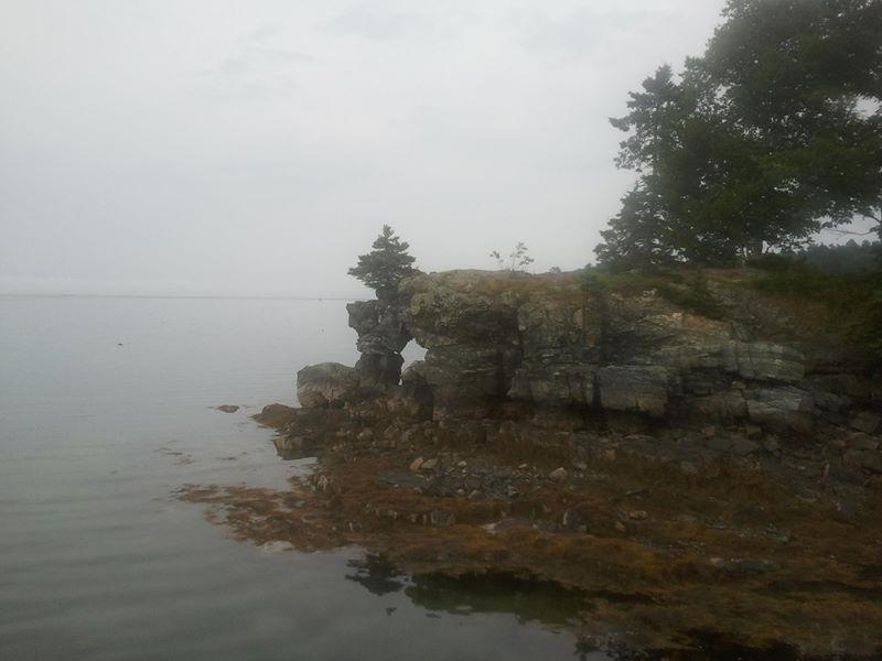 A small rocky shingle of a beach at Mount Desert Island, Maine; photo by Bruce S. Lieberman.