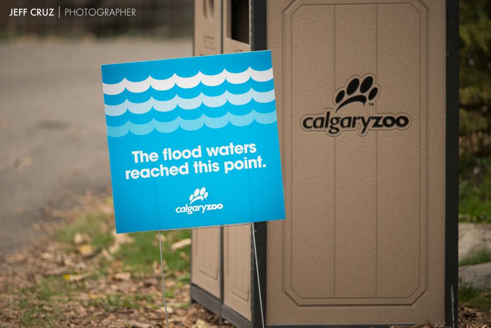 JeffCruz-Zoo-0071-6514_lowres.jpg