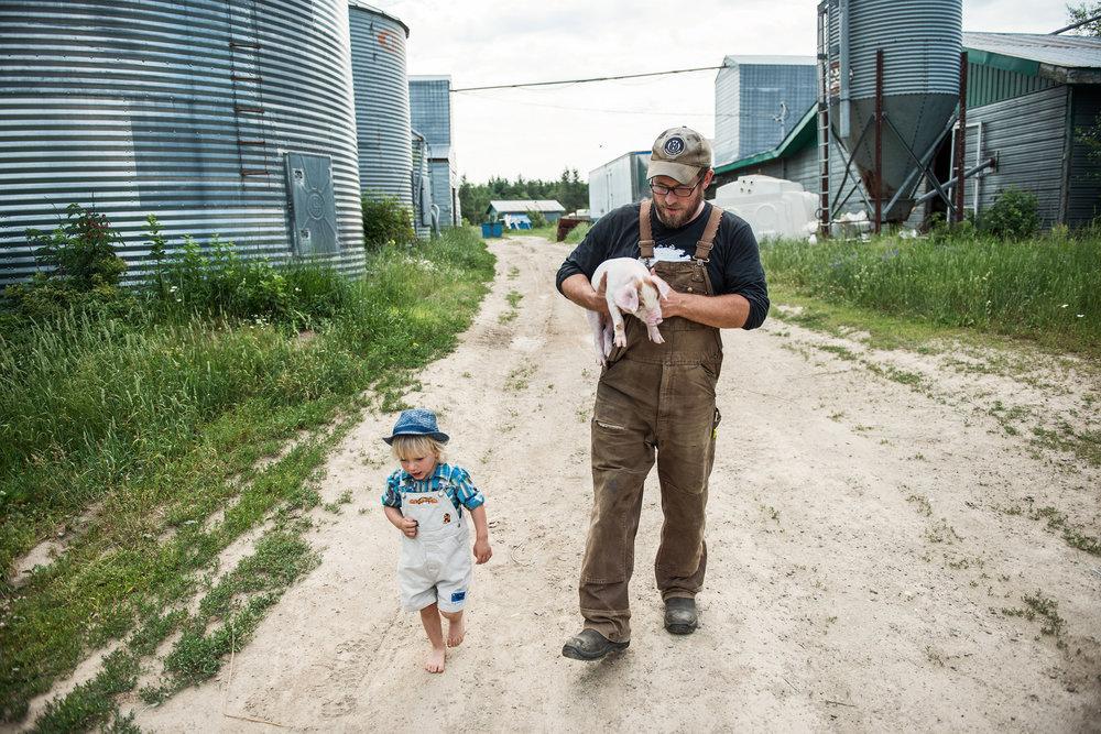 Ferme Terre Partagée Farm - Récolte de Chez Nous - Really Local Harvest