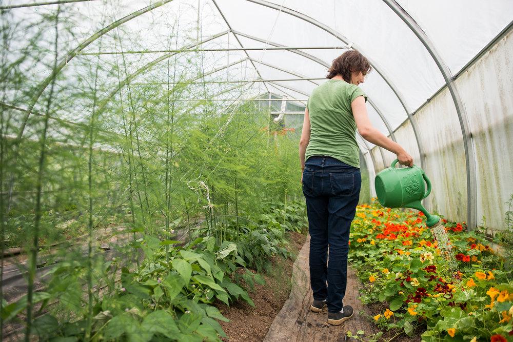 Les Jardins vert l'avenir