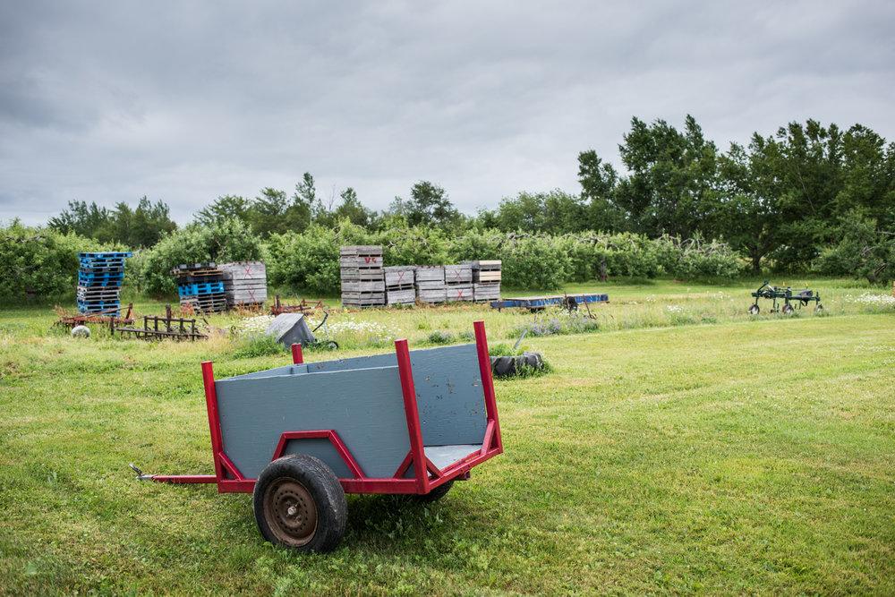Verger Goguen - Récolte de Chez Nous - Really Local Harvest