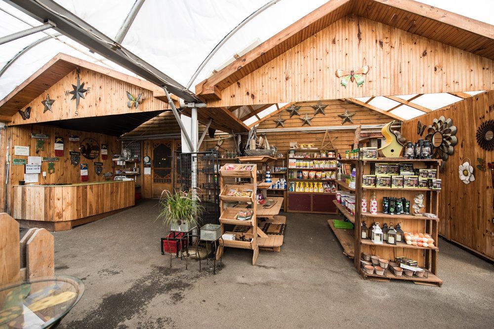 Copy of M. Tomate - Récolte de Chez Nous - Really Local Harvest