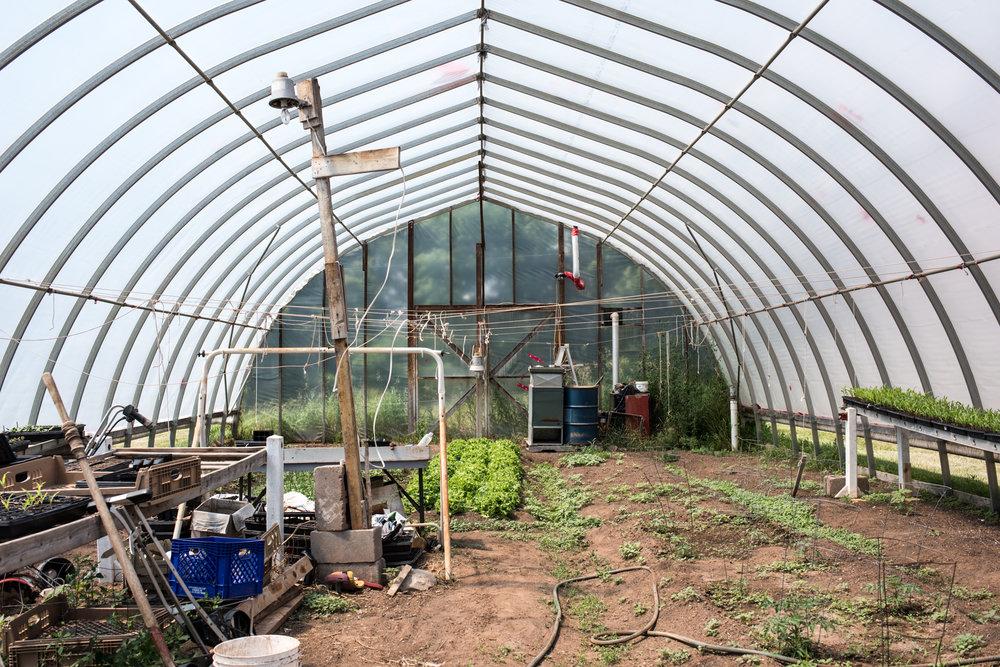 Copy of Chef Carson's Farm - Récolte de Chez Nous - Really Local Harvest