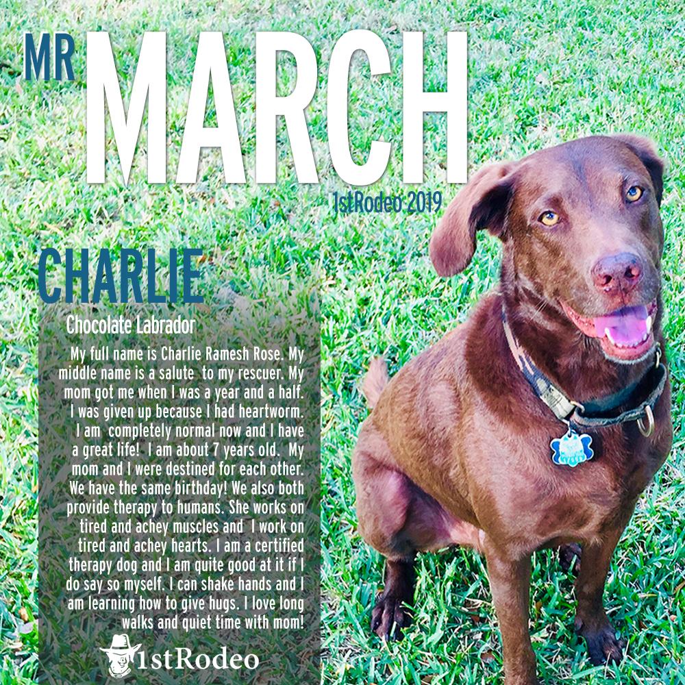 Mr. March D final.jpg