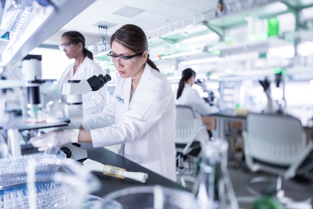 Lab-Technicians-in-Lab-X2.jpg