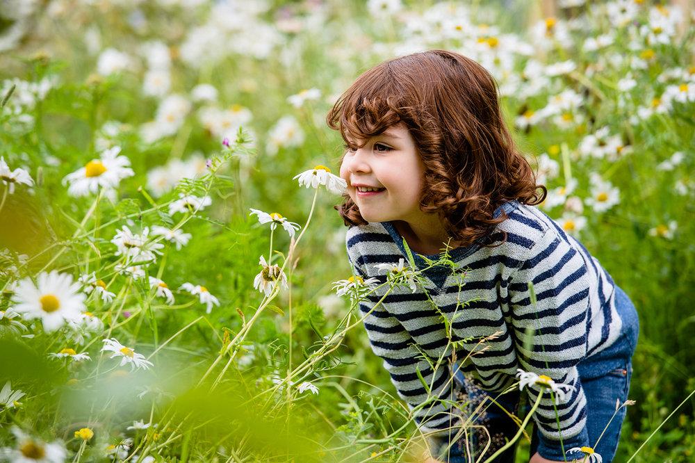 Garden_D-9_Large_web.jpg