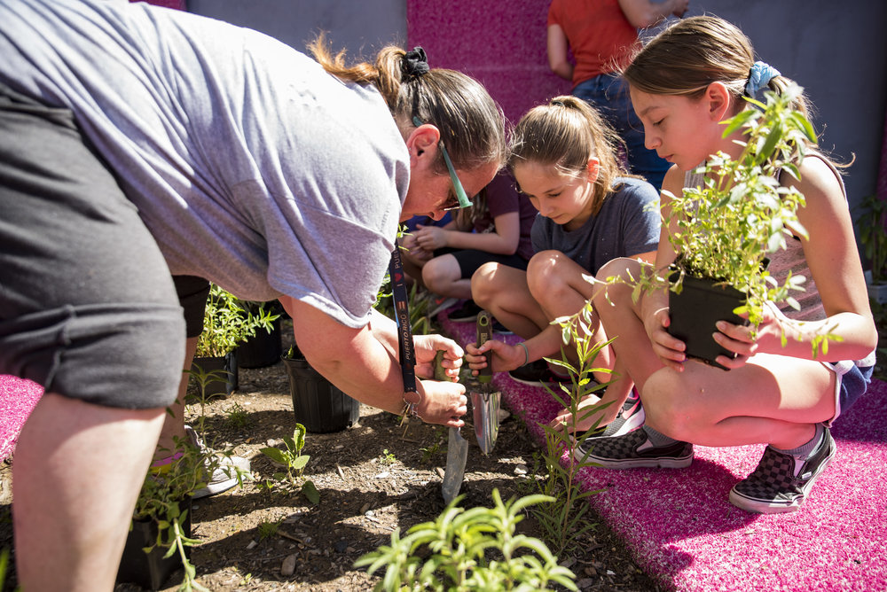2018-05May-24 Frankford Pause Planting Day_0049.jpg