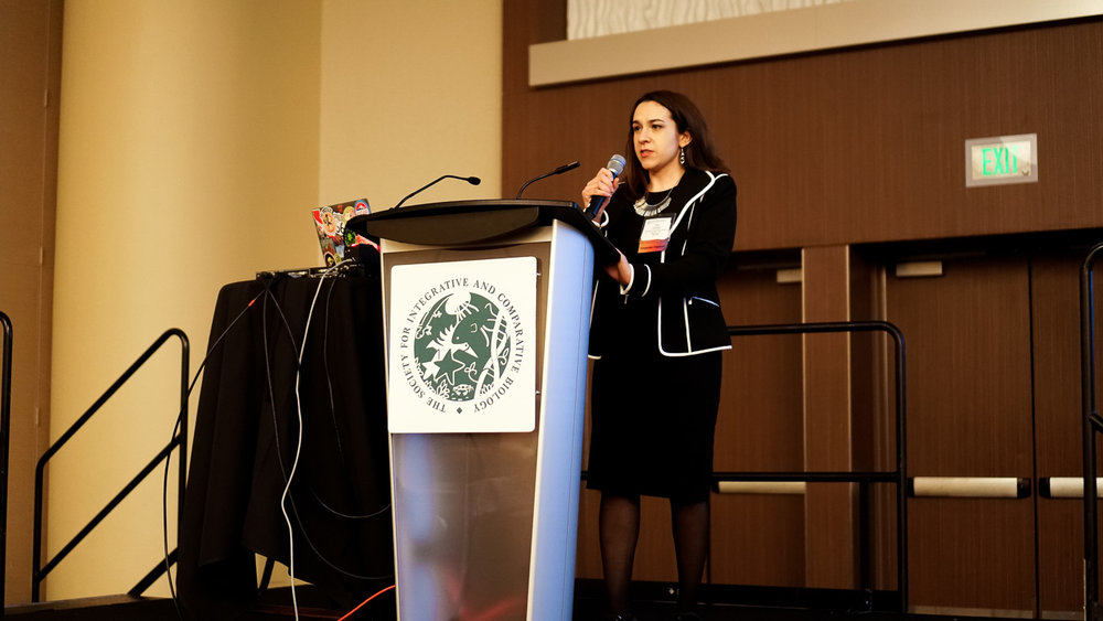 """ElShafie was the primary organizer and the first speaker in the society-wide symposium """"Science Through Narrative: Engaging Broad Audiences"""" at the 2018 Annual SICB Meeting in San Francisco, CA."""