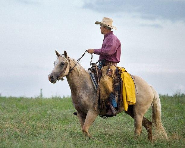 Jim Hoy - John Morrison Photo.jpg