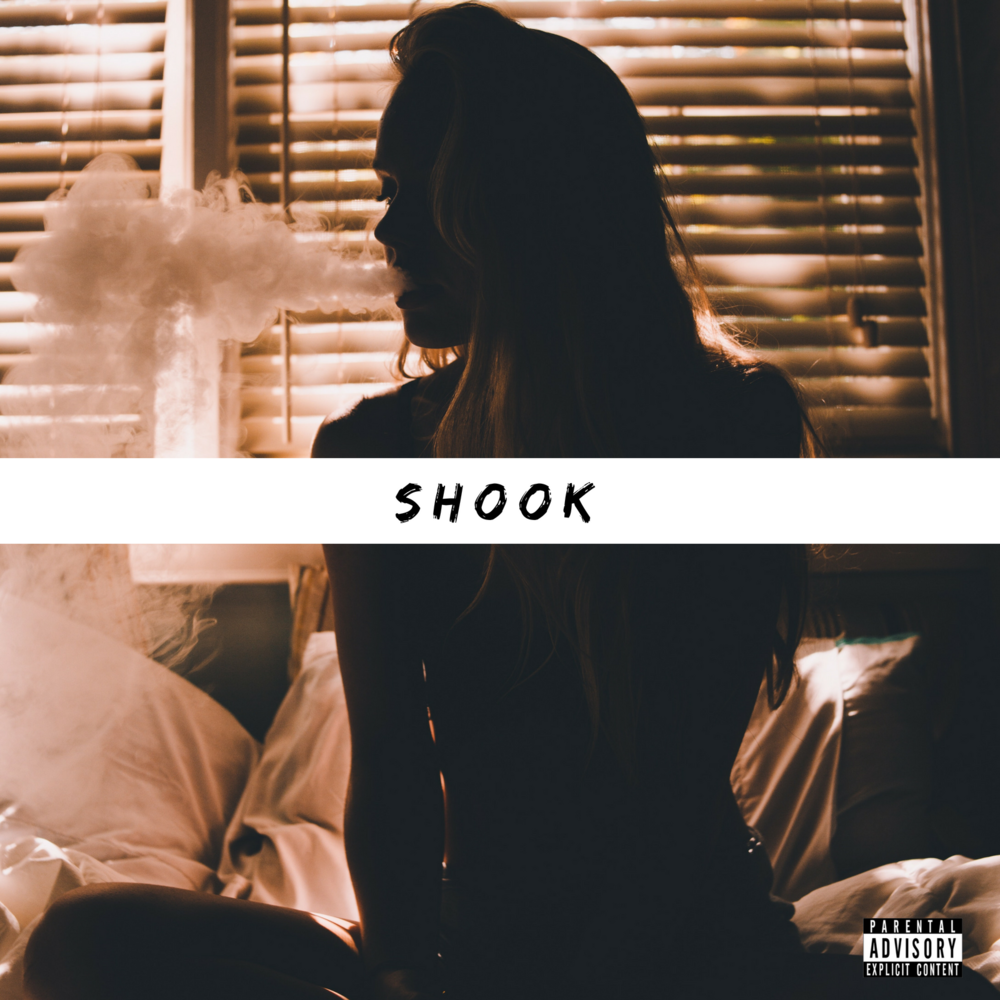Shook (TuneCore) (2).png