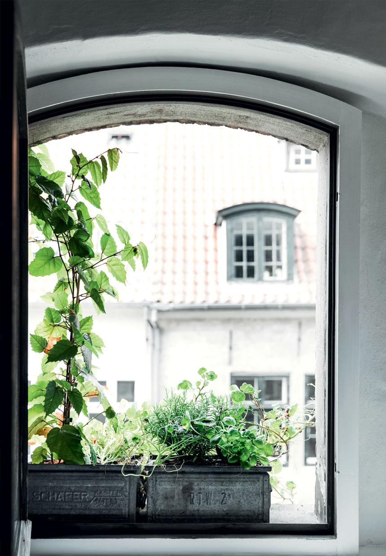 altankasse-planter-jolander-store-kongensgade-B0fsN9eatRBoMyzXQjd2GA