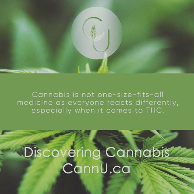 #cannabis #onlinelearning #discoveringcannabis #thc #cannabinoids