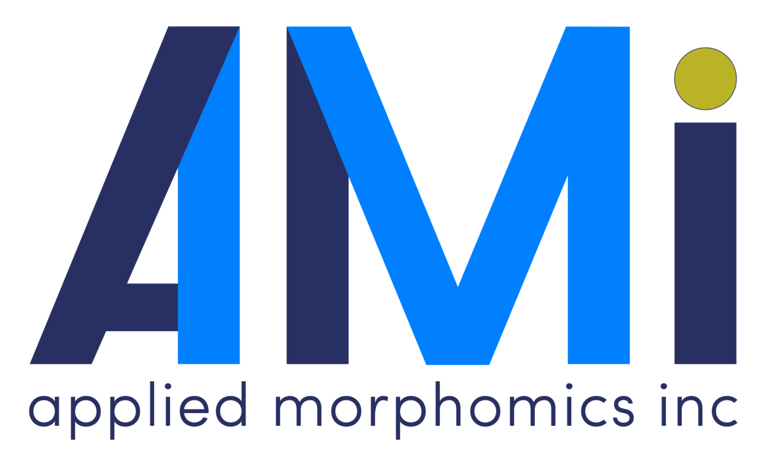 Applied Morphomics