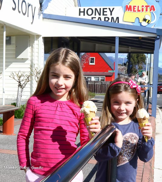 Lily Webb aged 8 Eliza Webb 6 on holiday with mum and dad from Adelaide enjoying an icecream at Chudleigh on their way to Cradle Mountain