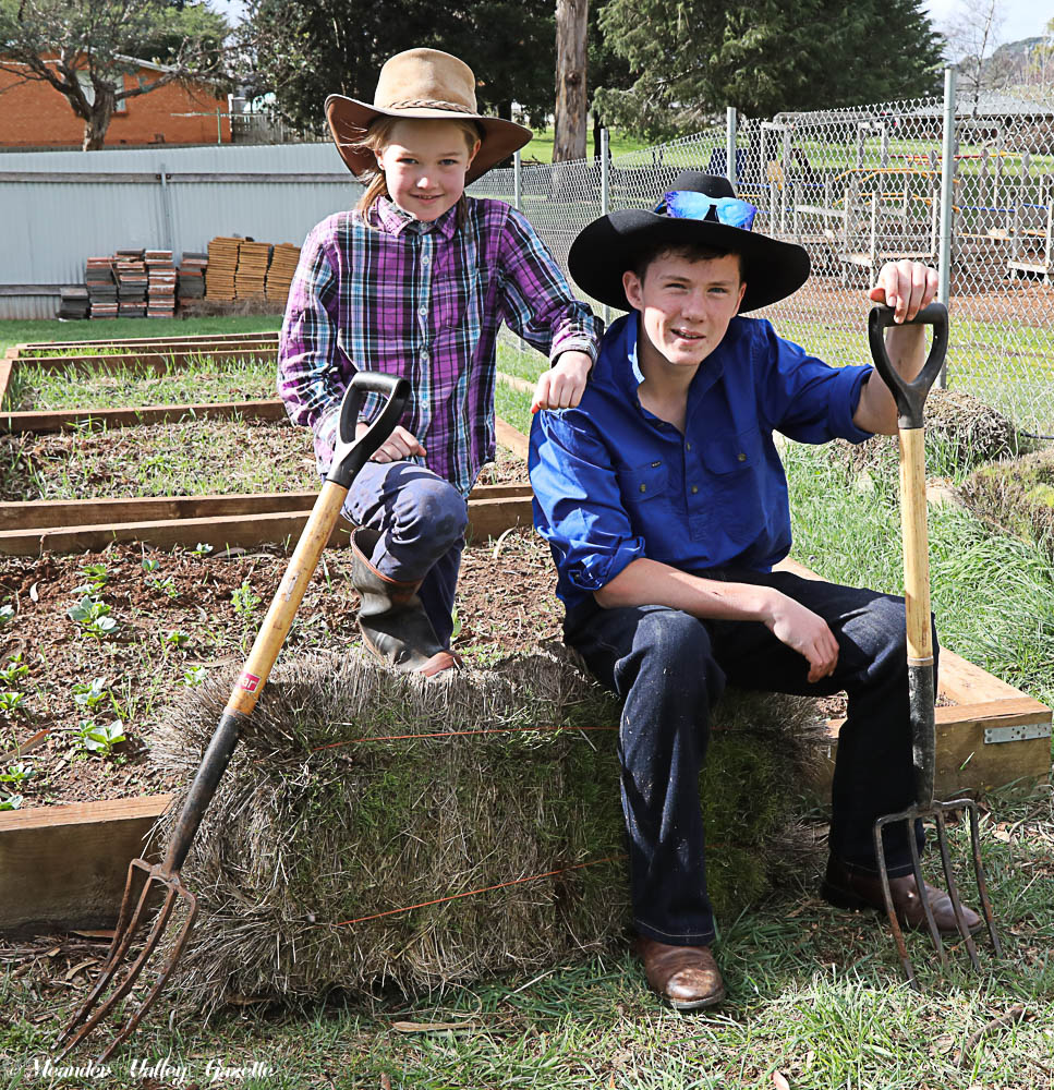 "Deloraine Primary students dressed as farmers for the Student Representative Counci'ls ""Fiver for a Farmer Day'. In a brilliant effort, $890.80 was raised"