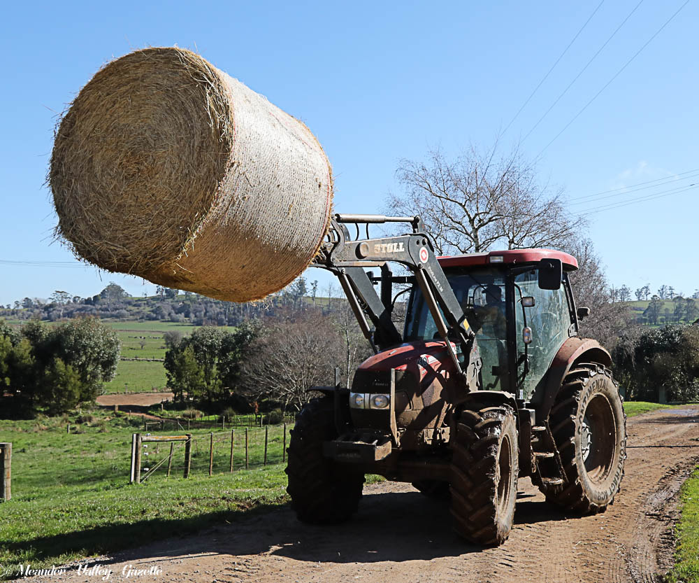 Hay is loaded on to Paul's truck at Tony Wadley's farm, Deloraine