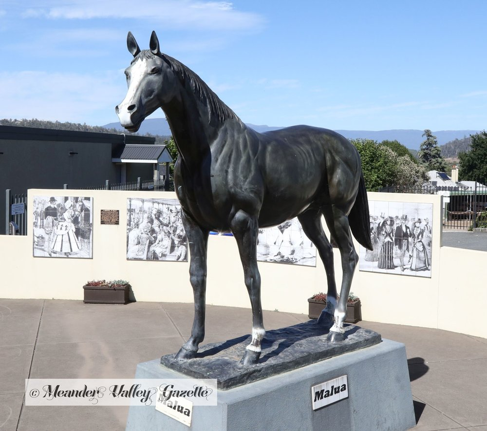 Deloraine bred Malua was inducted into Australian Racing Museum`s Hall of Fame in 2007.   Photo | Mike Moores