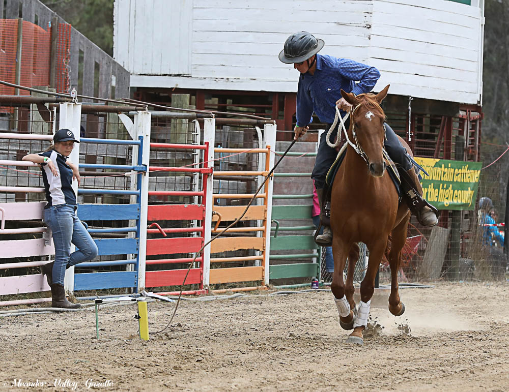 Geo Harvey riding Tanbark Redpa of Westbury competing in the Roy Davies Memorial Stockman's Whip Crack at the Harveydale gathering of the Mountain Cattlemen's Association. The competition involves hitting 10 targets with your whip in a horse shoe design. Pictured below: Ruby Geach 12yrs with brother Lenny 6yrs compete in the junior whip cracking.   Photo | Mike Moores