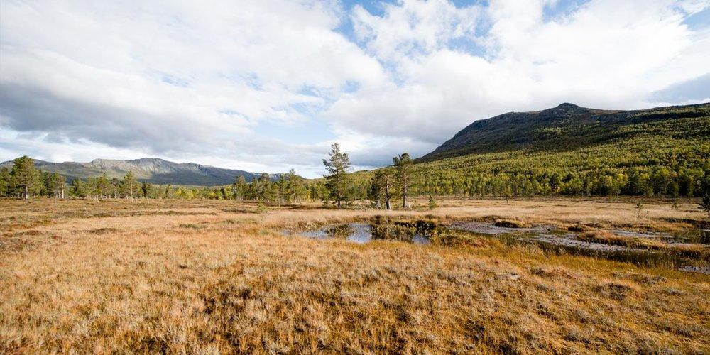 Sørøyan_2.jpg