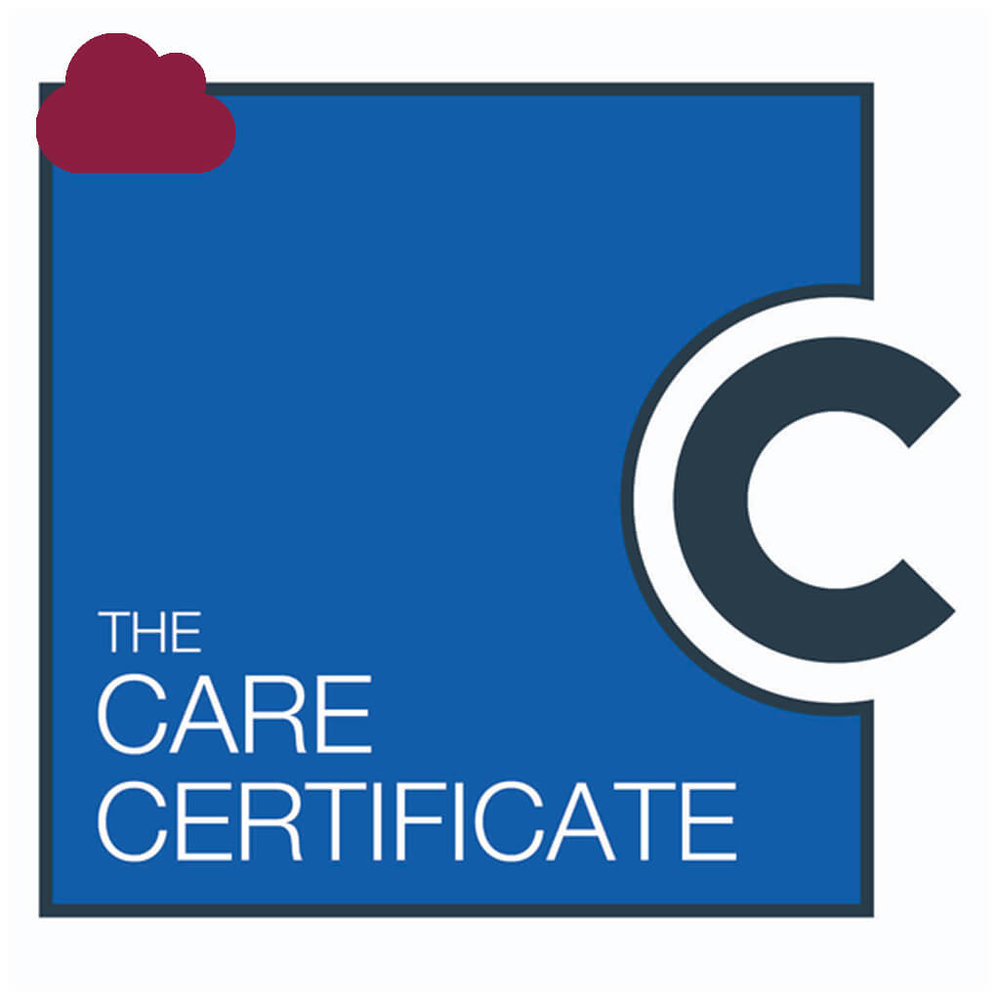 The Care Certificate (Blended Learning) -