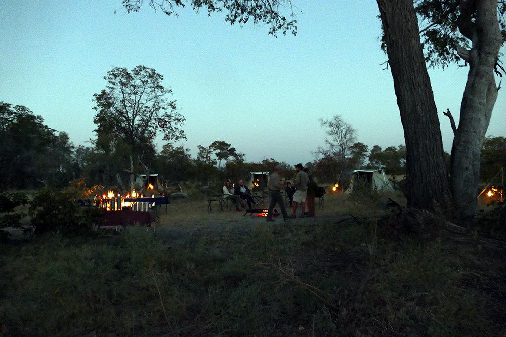 Glamping Safari