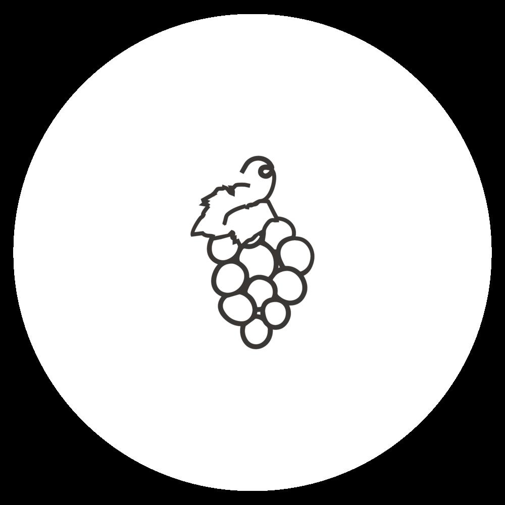 vingården