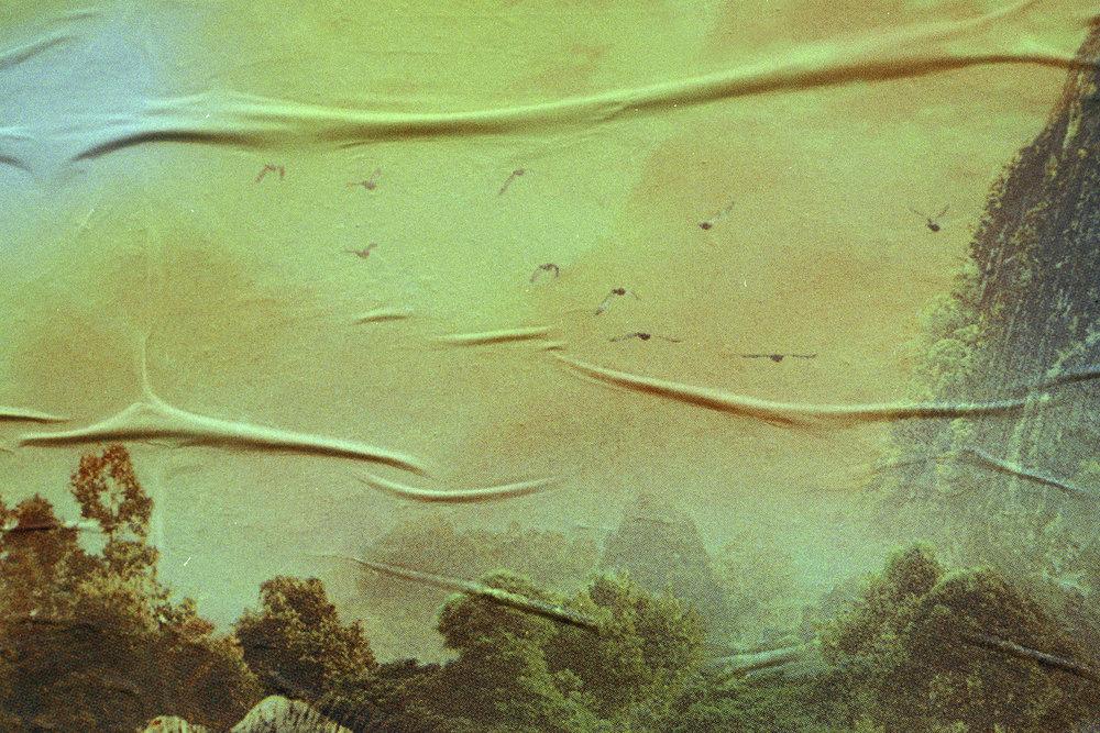 Traviesa.LandscapeLandscapes-02.JPG
