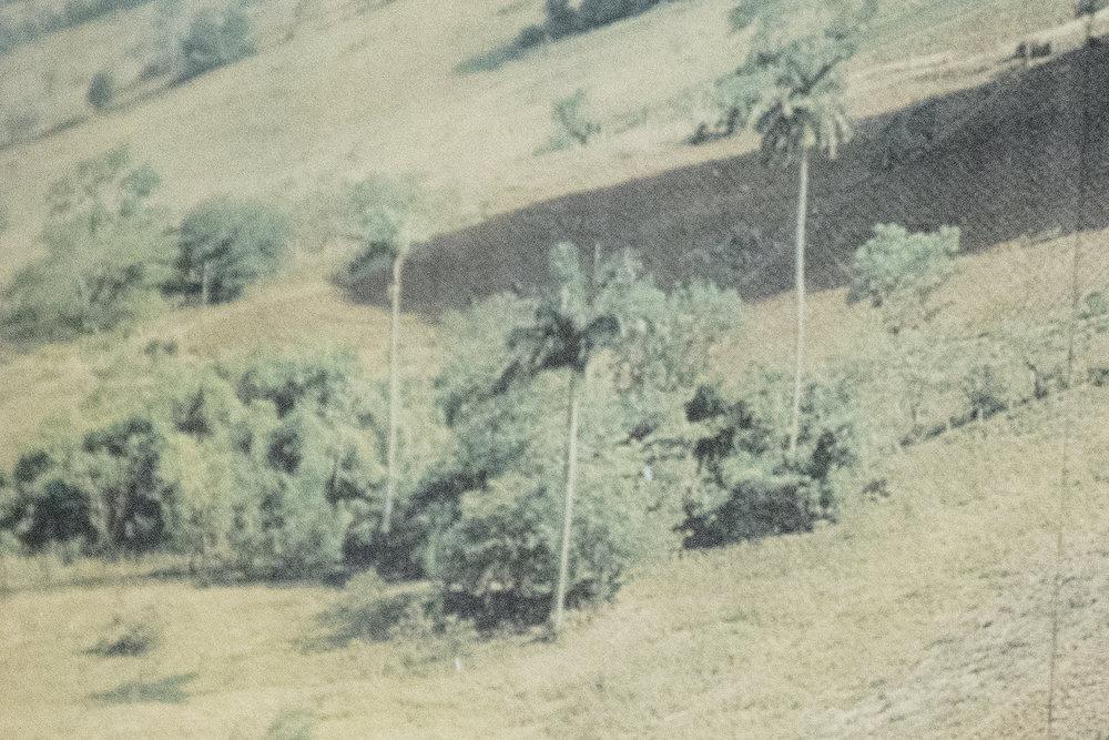 Traviesa.LandscapeLandscapes-03.JPG