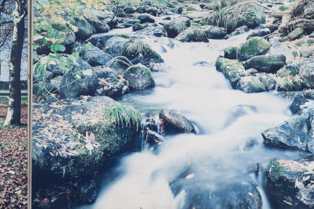 Traviesa.LandscapeLandscapes-11.JPG