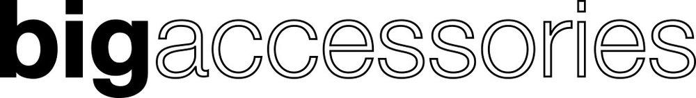 big accessories logo.jpg