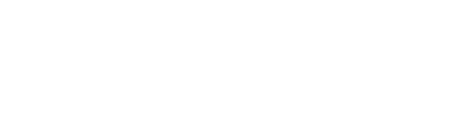 Barnes & Co Insurance Services