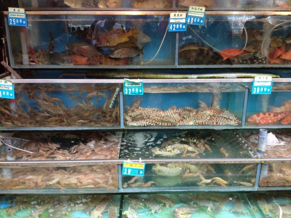 HK-Lamma-Island2-fish-market-1024x768.jpg