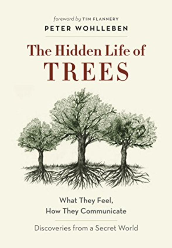 THE HIDDEN LIFEOF TREES - by Peter Wohlleben