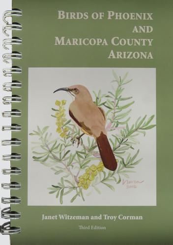 Birds of Phoenix, Birding in Arizona.jpg