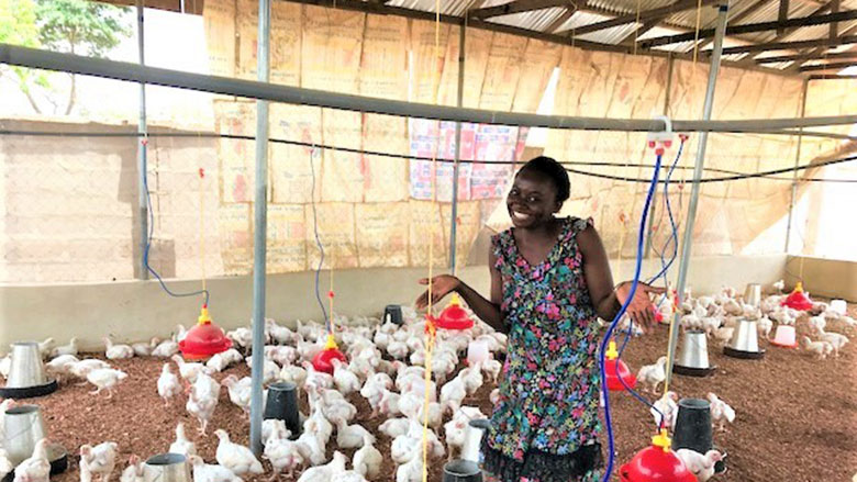 chickenfarm.jpg
