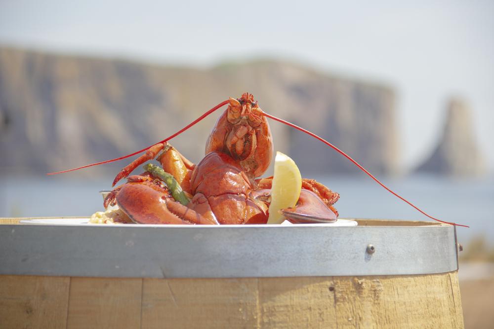 - with Lemon & garlic Butter - 1 1/2 - Steamed Lobster