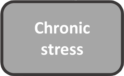 chronic stress.png
