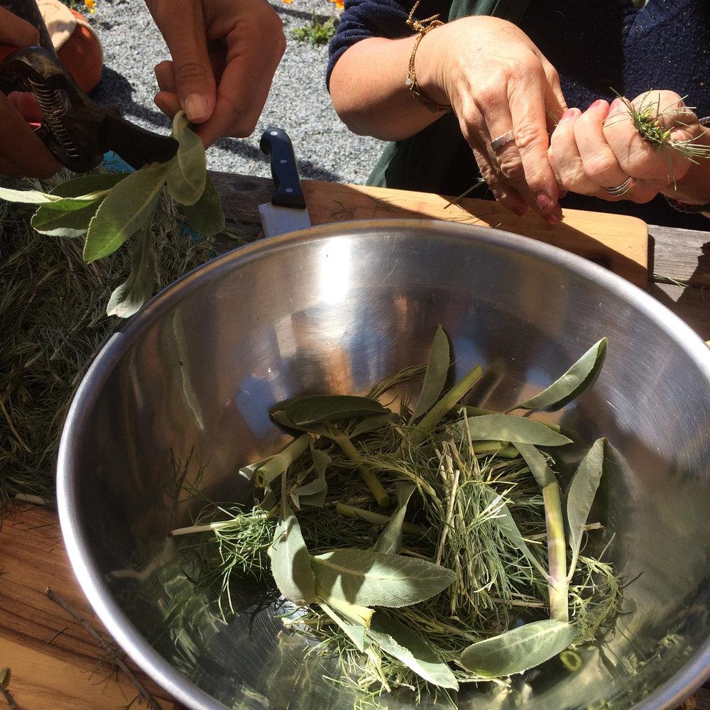 summer-handcrafted-herbalism.jpg