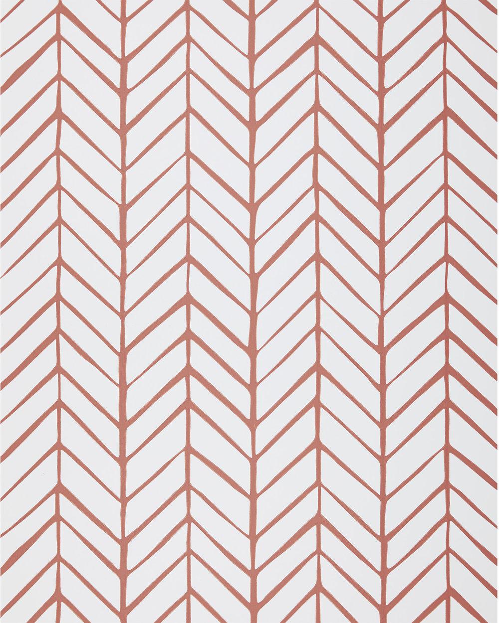 Wallpaper_Full_Feather_Coral_MV_Crop_BASE.jpg