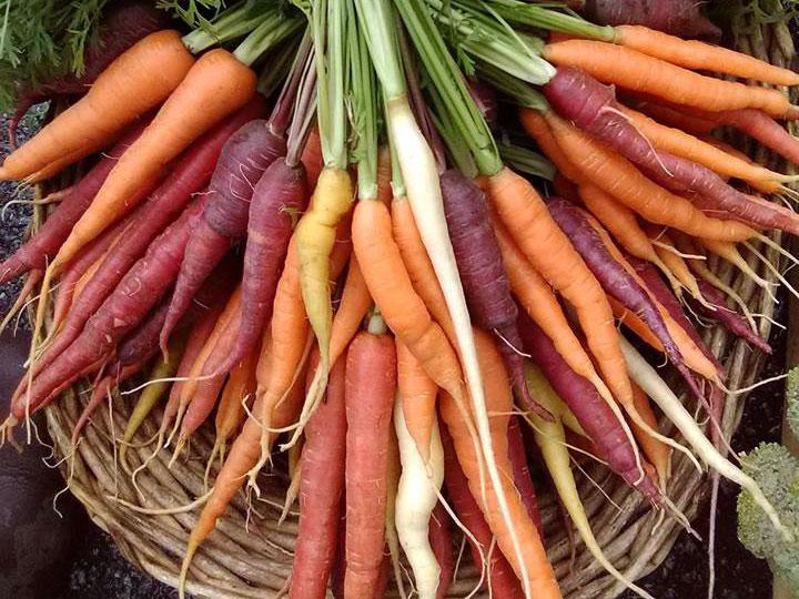 St-Johnsbury-Farmers-Market2.jpg