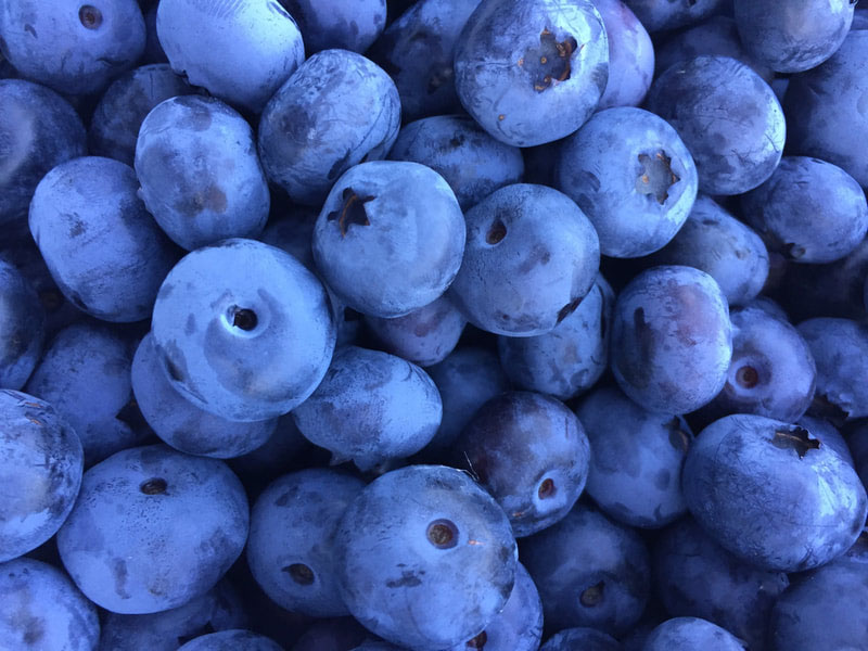Browns-Beautiful-Blueberries.jpg
