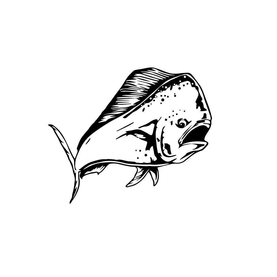 Always Angling Premiere Fish Charters