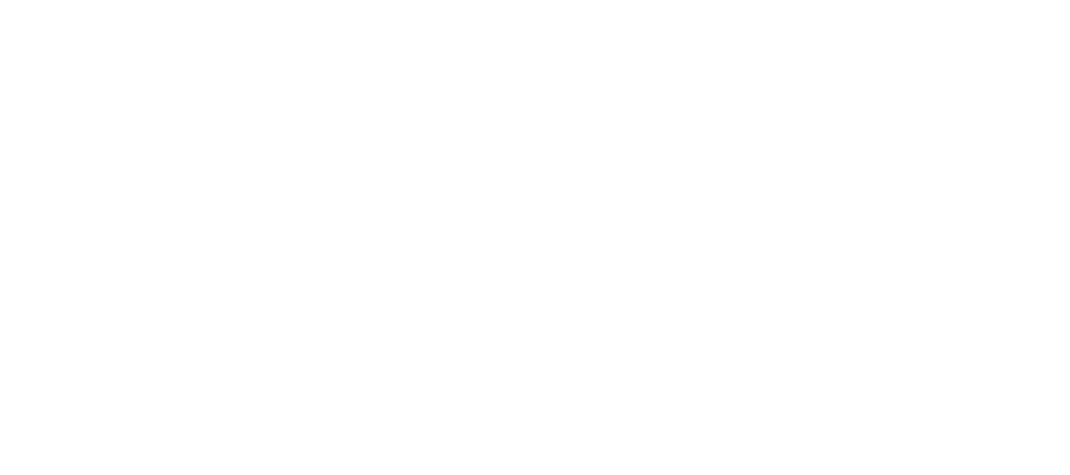 Aerohunter Adventure Flights